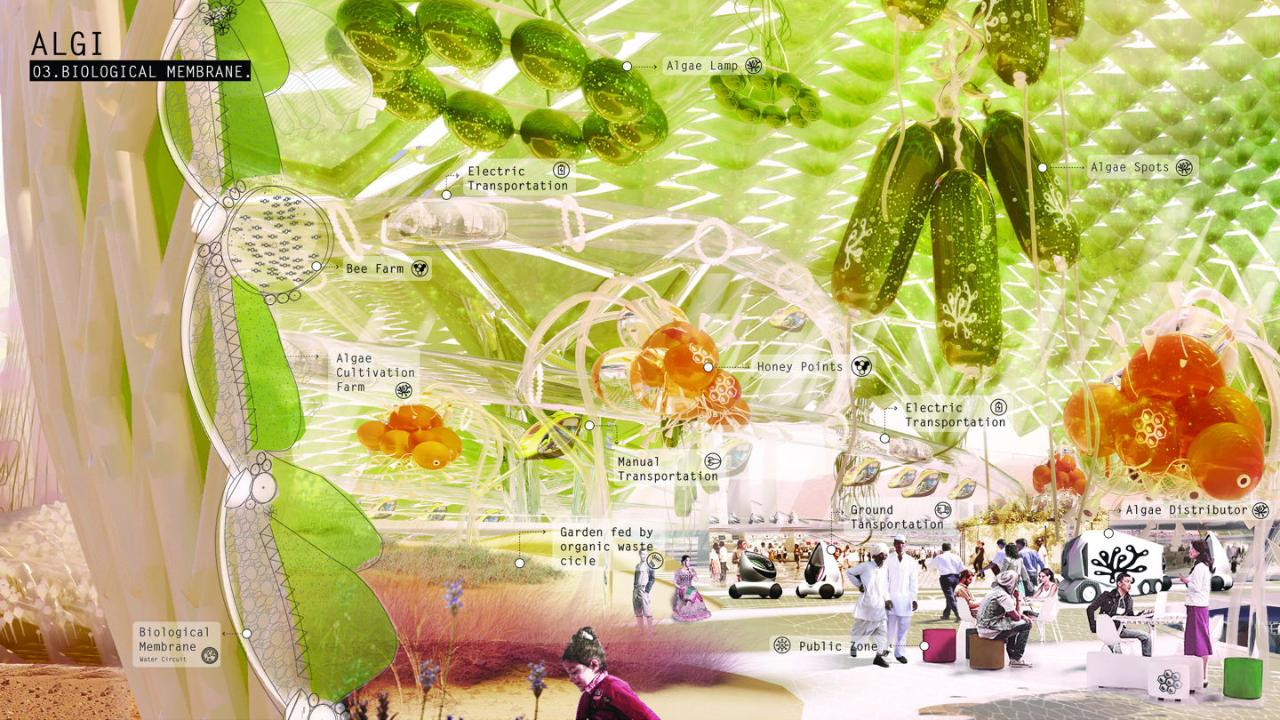 A biological membrane of algae and water protects contest finalist Algi City, a collective community based on the closed-loop use of resources.